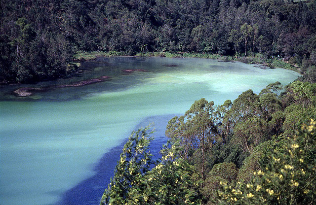 Dataran Tinggi Dieng Galeri Wisata Nusantara